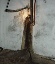 A Basement Pipe Penetration in Edmonton Later Repaired with a Urethane Seal