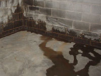 basement water leaks into a home is through the basement wall floor